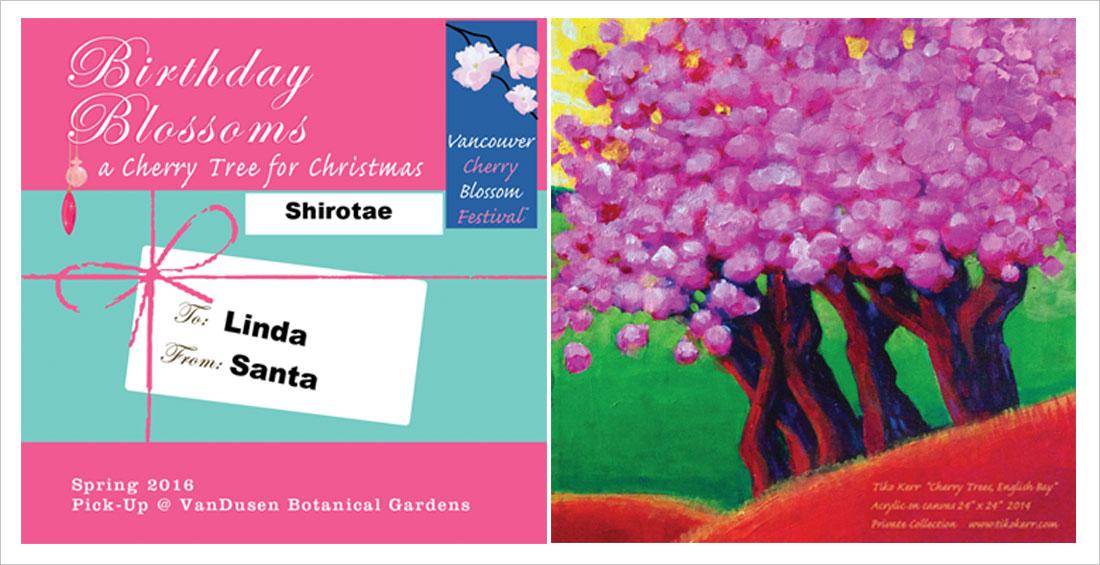 jibe designs _cherry4_petra raschig graphic designer